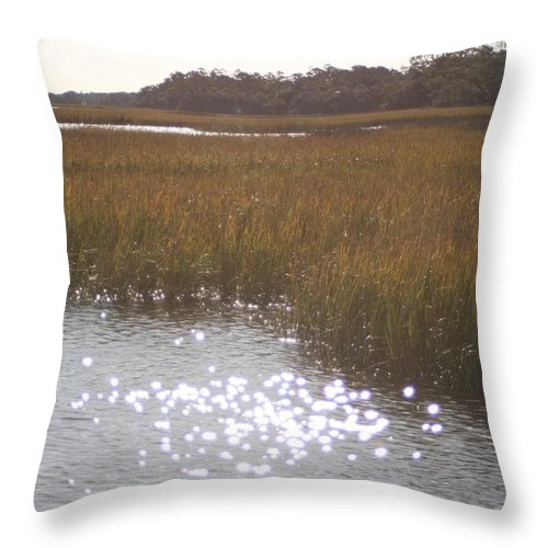 Marsh Throw Pillow featuring the photograph Sparkling Marsh by Nadine Rippelmeyer