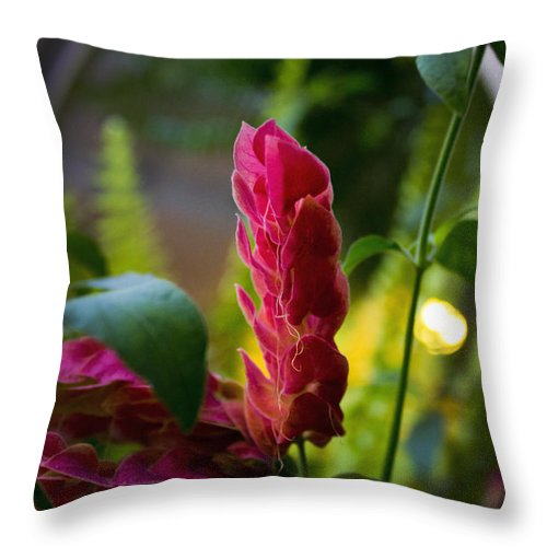 Spear Throw Pillow featuring the photograph Spear Of Beauty by Al Bourassa