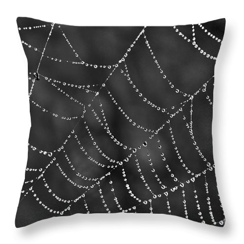 Spider Web Throw Pillow featuring the photograph Spider Web by Jeannette Hunt