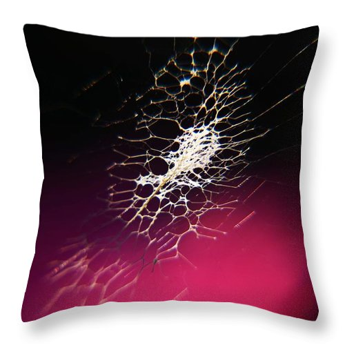 Throw Pillow featuring the photograph Spider Webs by Phillip Segura