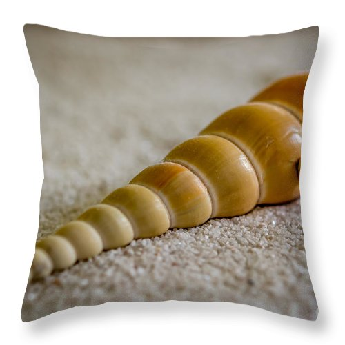 Shells Throw Pillow featuring the photograph Spiral Shell by Sabine Edrissi