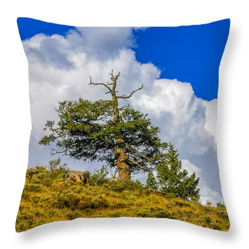 Clouds Throw Pillow featuring the photograph Spirit Rising by Fred J Lord