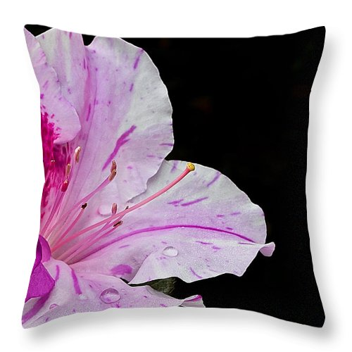 Flower Throw Pillow featuring the photograph Splash Of Color by Mark McKinney