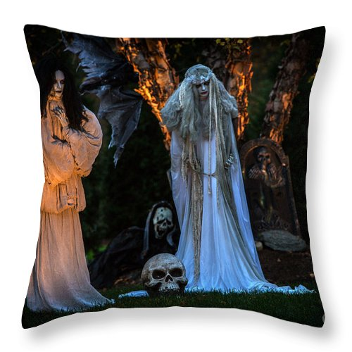 Iris Holzer Richardson Throw Pillow featuring the photograph Fantom Women Vinette by Iris Richardson