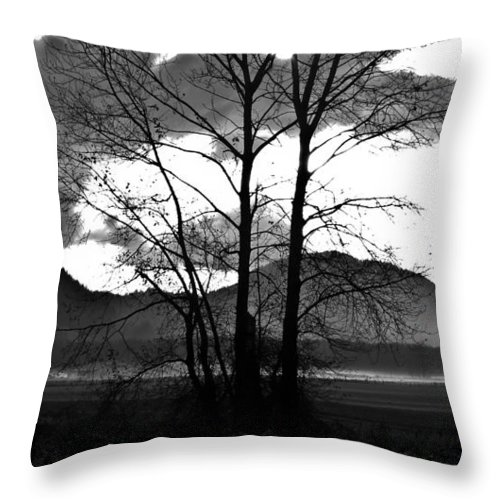 Spooky Throw Pillow featuring the photograph Spooky Field by Redjule Photography