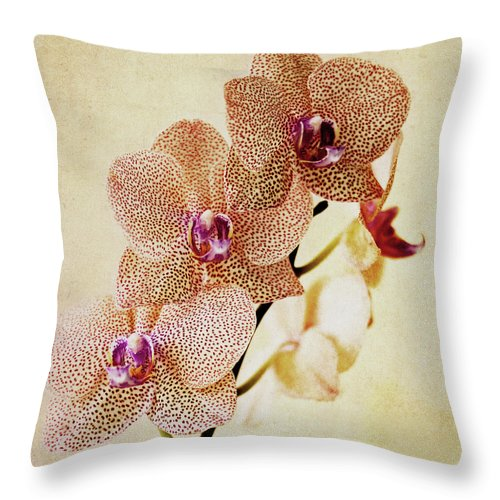 Petal Throw Pillow featuring the photograph Spotted Orchid by Image By Sherry Galey