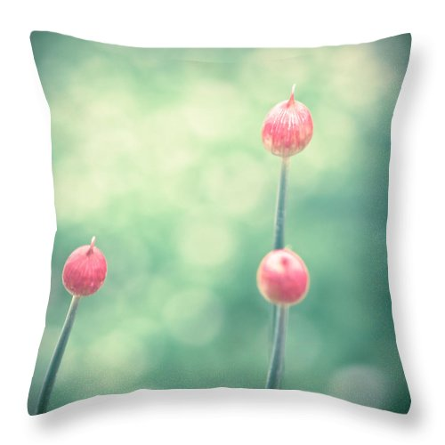 Allium Throw Pillow featuring the photograph Spring Allium Buds by Debi Bishop