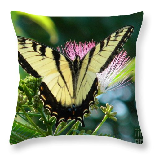 Butterfly Throw Pillow featuring the digital art Spring Arrival by Matthew Seufer