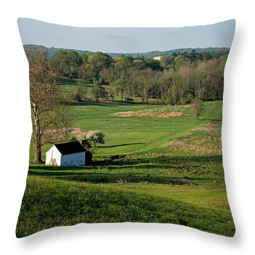 Nature Throw Pillow featuring the photograph Spring At Maurice Stevens Spring House by Michael Porchik