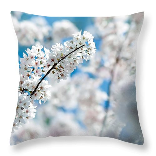 White Throw Pillow featuring the photograph Spring Bloom by Alex Grichenko