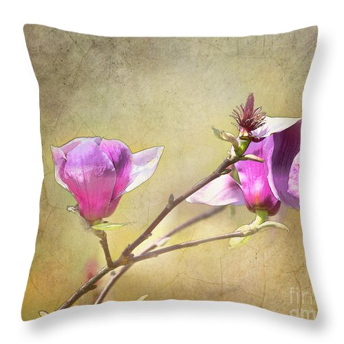 Flowers Throw Pillow featuring the photograph Spring Blossoms - Digital Sketch by TN Fairey