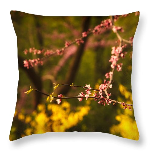 Pink Throw Pillow featuring the photograph Spring Blossoms I by Mary Smyth