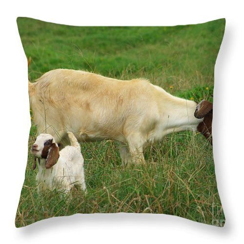 White Throw Pillow featuring the photograph Spring Born by Mary Deal