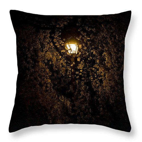 Cherry Tree Blossom Throw Pillow featuring the photograph Spring Evening Golden Glow by Greg Reed