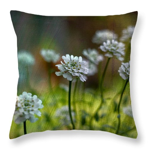 Floral Art Throw Pillow featuring the photograph Spring Fling by Bonnie Bruno