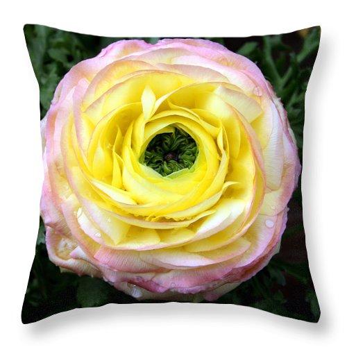 Green Throw Pillow featuring the photograph Spring Flower 3 by Bob Slitzan
