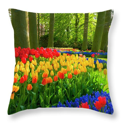 Flowerbed Throw Pillow featuring the photograph Spring Flowers In A Park by Jacobh