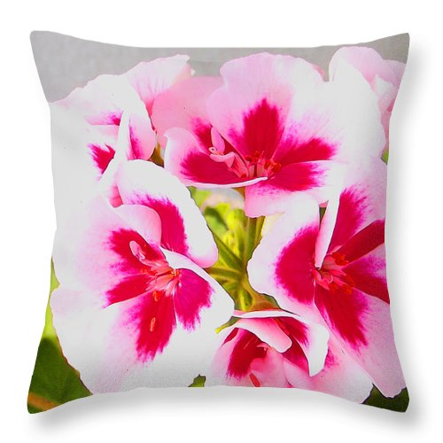 Nature Throw Pillow featuring the photograph Spring Garden 3 by Jimi Bush