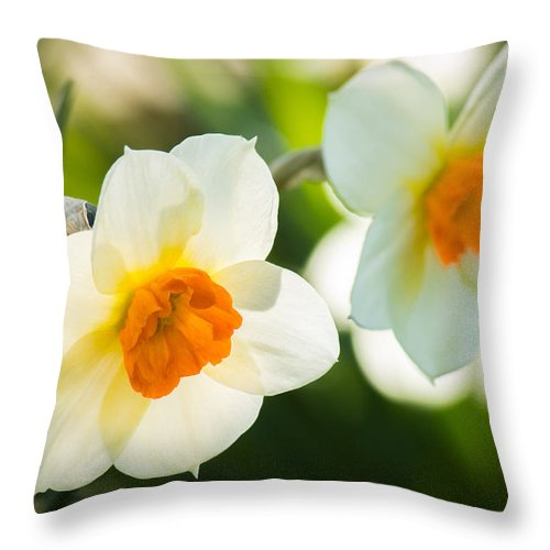 White Throw Pillow featuring the photograph Spring Glow by Bill Pevlor