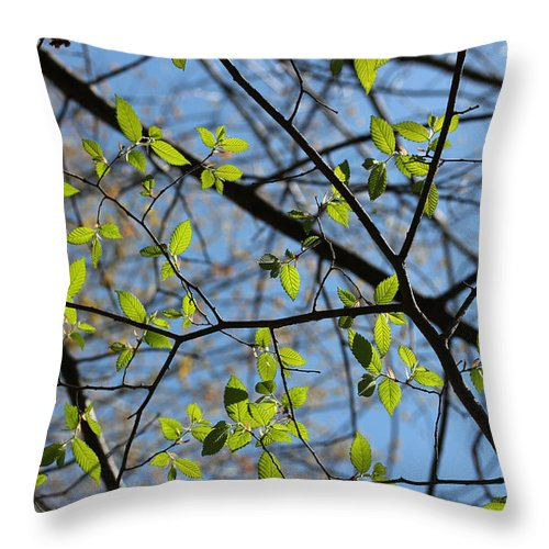 Leaf Throw Pillow featuring the photograph Spring Leaves 2 by Mary Bedy