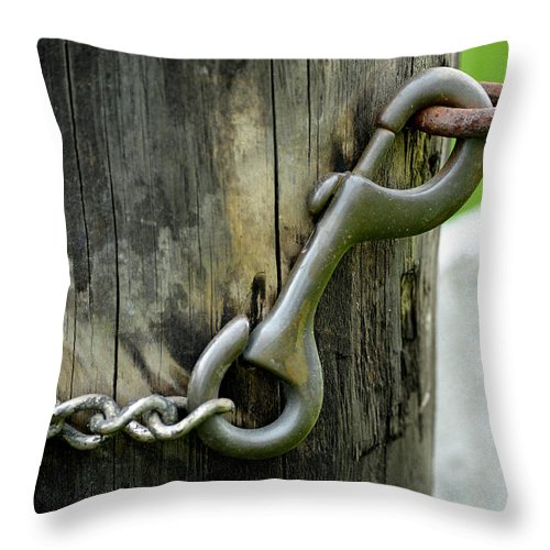 Spring Loaded Throw Pillow featuring the photograph Spring Loaded by Lisa Phillips