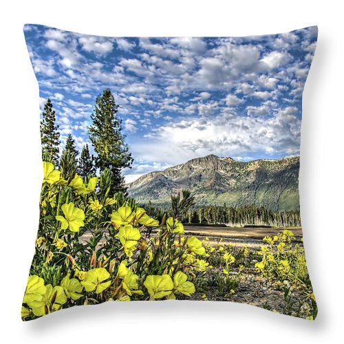 Landscape Throw Pillow featuring the photograph Spring Meadow by Maria Coulson