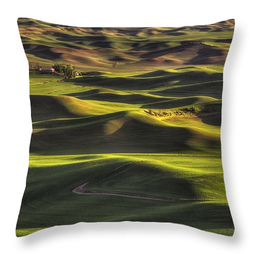Wheat Throw Pillow featuring the photograph Spring On The Palouse by Mark Kiver