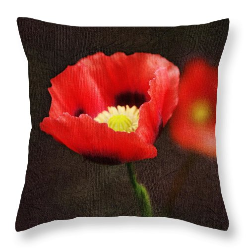 Poppies Throw Pillow featuring the photograph Spring Poppies by Terry Fleckney