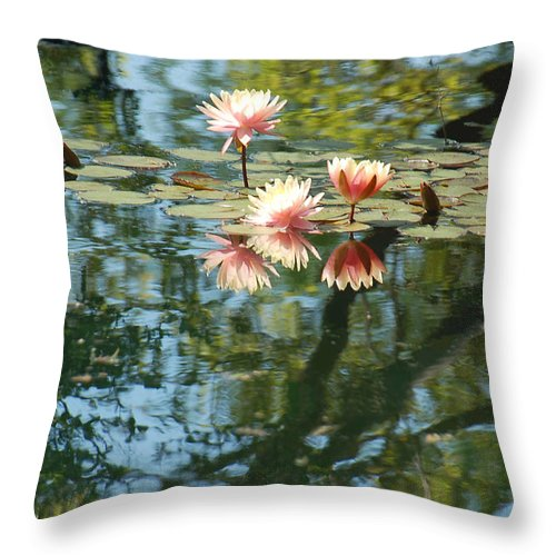 Pink Water Lily Throw Pillow featuring the photograph Spring Reflections by Suzanne Gaff