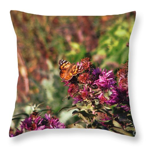 Flowers Throw Pillow featuring the photograph Spring Time by Tommy Anderson
