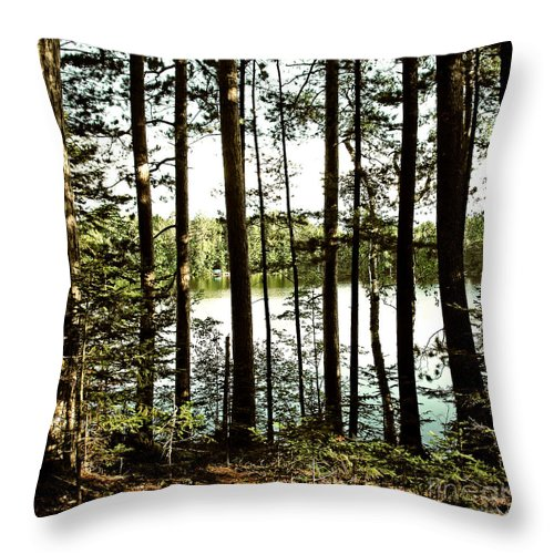 North Throw Pillow featuring the photograph Square North Woods Lake by Birgit Tyrrell