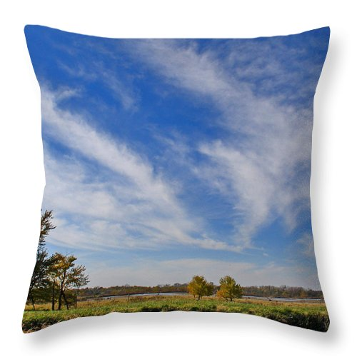 Landscape Throw Pillow featuring the photograph Squaw Creek Landscape by Steve Karol