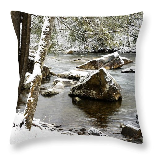 Cranberry River Throw Pillow featuring the photograph St Patricks Day Cranberry River by Thomas R Fletcher