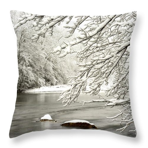 Williams River Throw Pillow featuring the photograph St Patricks Day Snow by Thomas R Fletcher