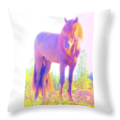 Horse Throw Pillow featuring the photograph The Stallion Came To Me In A Dream by Hilde Widerberg