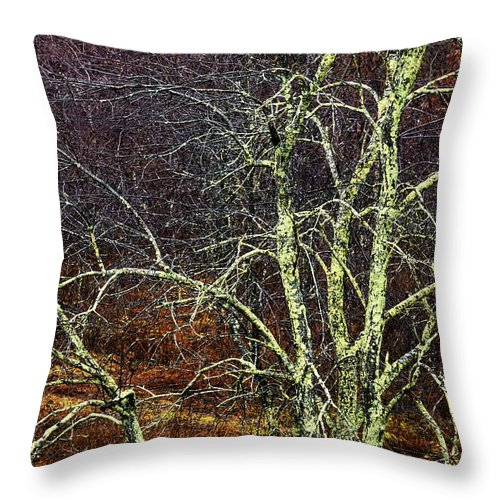 Winter Throw Pillow featuring the photograph Stand Out by Thomas R Fletcher