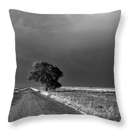 Landscape Throw Pillow featuring the photograph Standing All Alone by Pam Romjue