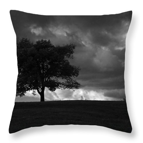 Landscape Throw Pillow featuring the photograph Standing Alone by Lena Wilhite