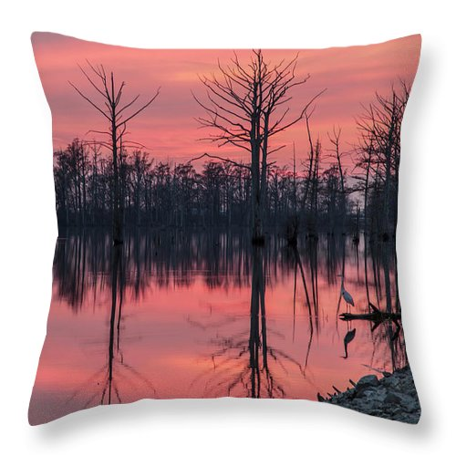 Outdoors Throw Pillow featuring the photograph Standing Guard by Larrybraunphotography.com