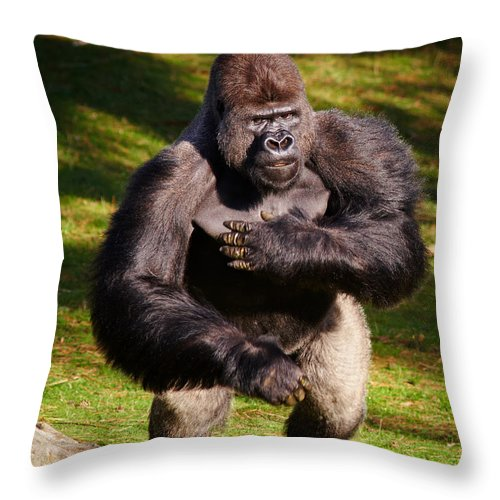 Africa Throw Pillow featuring the photograph Standing Silverback Gorilla by Nick Biemans