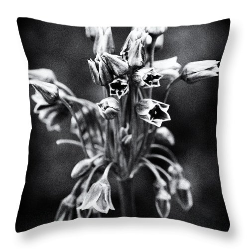 Beauty In Nature Throw Pillow featuring the photograph Standing Tall by Venetta Archer