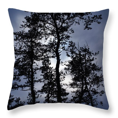 Trees Throw Pillow featuring the photograph Standing Talls by Jeffery L Bowers