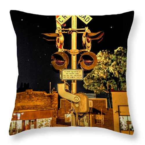 Standing Watch Throw Pillow featuring the photograph Standing Watch by David Morefield