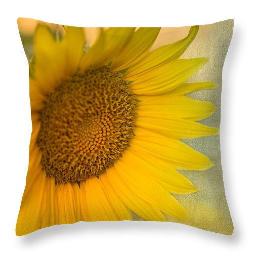 Sunflower Throw Pillow featuring the photograph Star Of The Show by Betty LaRue