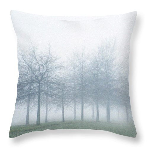Farm Throw Pillow featuring the photograph Stark by Skip Willits