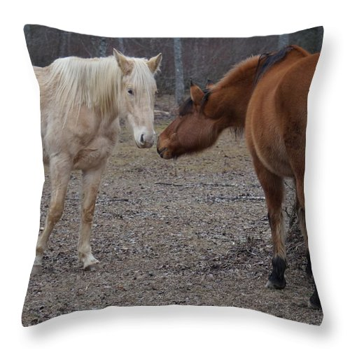Western Throw Pillow featuring the photograph Staying In Touch by John Wall