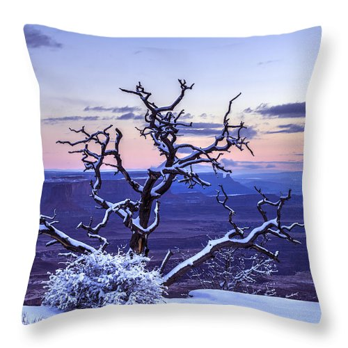 Utah Throw Pillow featuring the photograph Steadfast by Dustin LeFevre