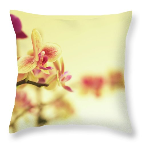 Purple Throw Pillow featuring the photograph Stem Of Orchids by Jlph