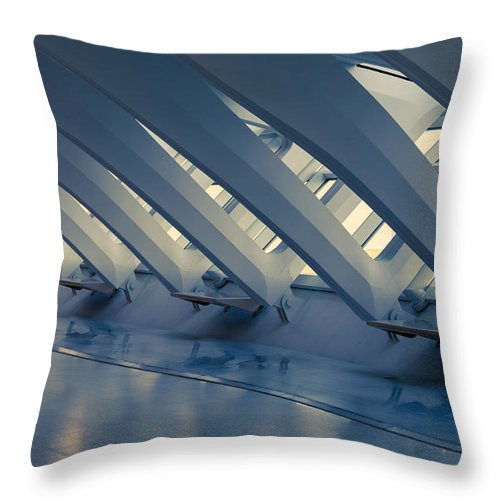 Mma Throw Pillow featuring the photograph Sterile by Lauri Novak