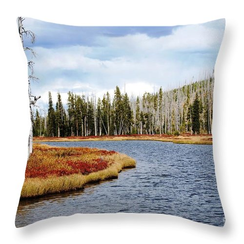 Yellowstone Throw Pillow featuring the photograph Still Standing by Deanna Cagle